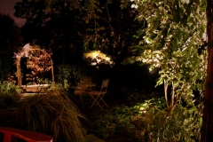 accent-lighting-in-small-garden-area-in-hinsdale-il