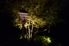 bird-house-focal-point-lighting-2