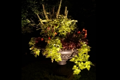 close-up-of-garden-planter-accent-lighting