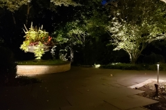 colorful-planter-focal-point-lighting