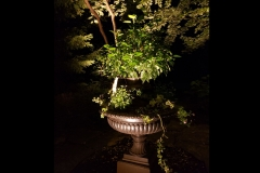 garden-accent-lighting-on-planter