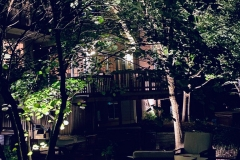 backyard-lighting-geneva-5