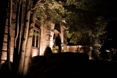 downers-grove-home-2-the-illuminators-landscape-lighting