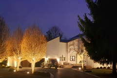 outdoor-landscape-lighting-front-elmwood-park