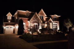 plainfield-home-the-illuminators-illinois