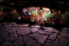patio-walkway-lighting-in-wheaton
